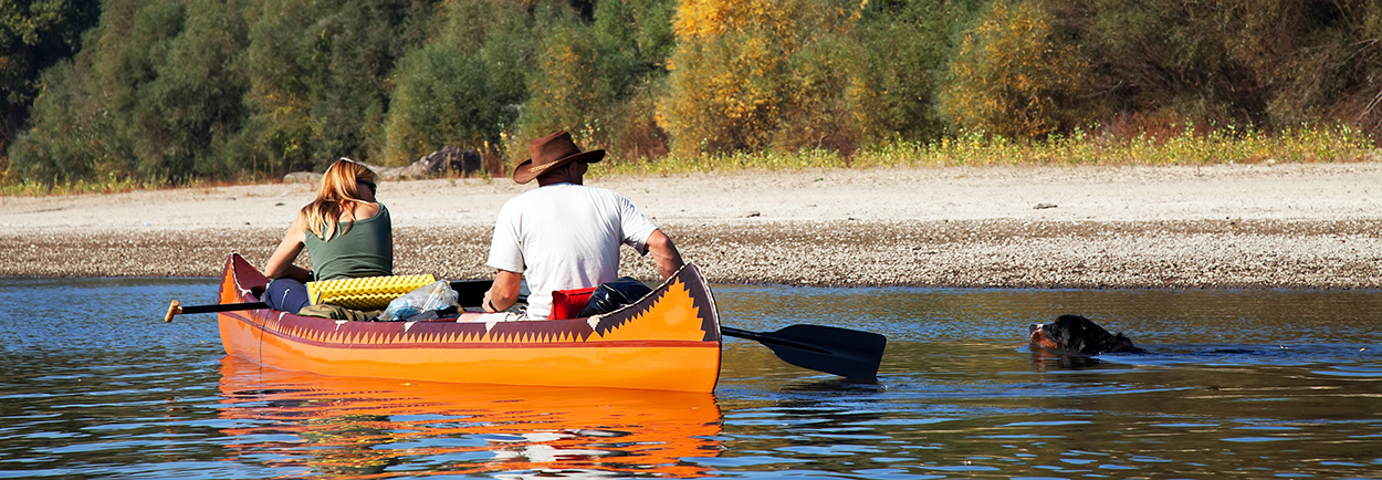 Couple on small boat with lab swimming towards them