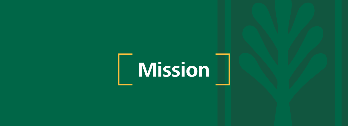 Mission header in green