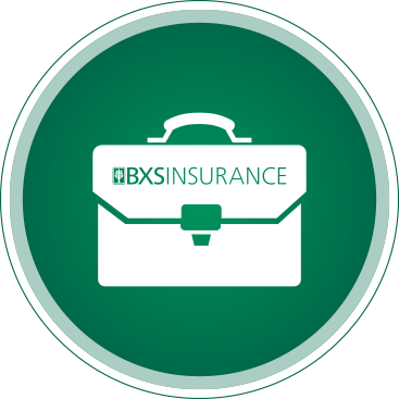White Briefcase with the BXS Insurance logo with a green background